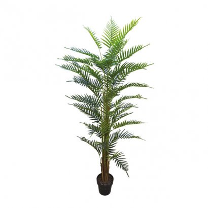 ARTIFICIAL AREKA TREE REAL TOUCH 180CM
