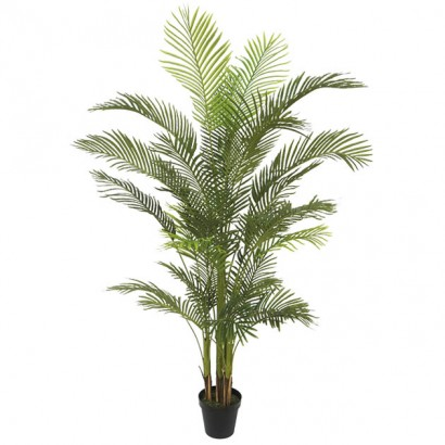 ARTIFICIAL AREKA TREE REAL TOUCH 210CM - 1