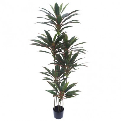 ARTIFICIAL DRACAENA TREE REAL TOUCH 150CM - 1