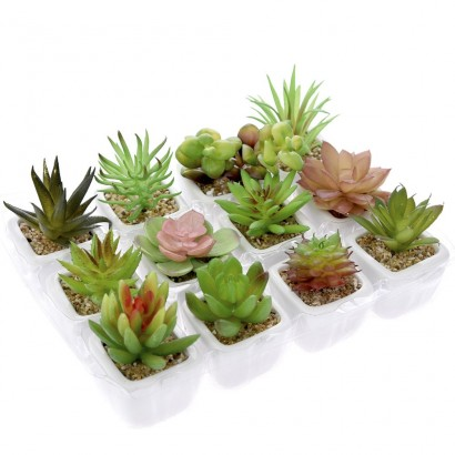 CACTUS IN FLOWER POT (12 DESIGNS) 9CM