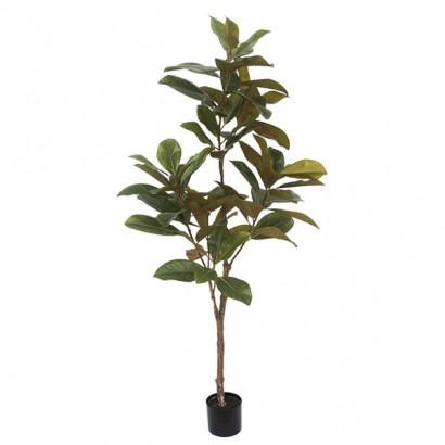 ARTIFICIAL MAGNOLIA TREE REAL TOUCH 180CM - 1