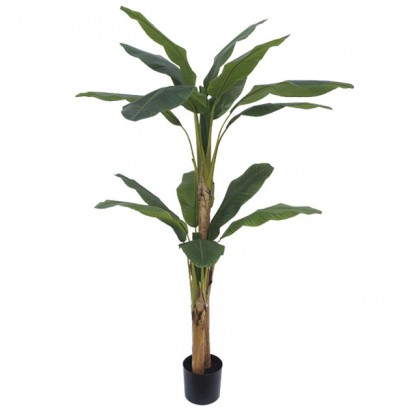 ARTIFICIAL BANANA TREE REAL TOUCH 190CM - 1