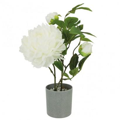 ARTIFICIAL PEONY PLANT CREAM 40CM - 1