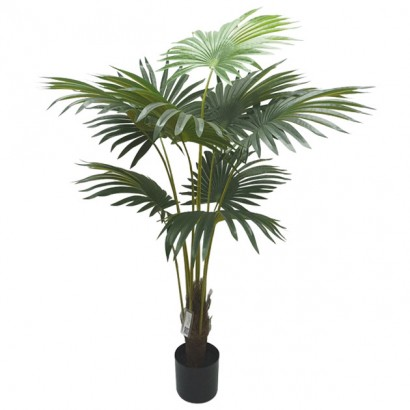 ARTIFICIAL PALMA TREE REAL TOUCH 160CM - 1